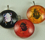 Glass beetle pendants by Frazzled Finch